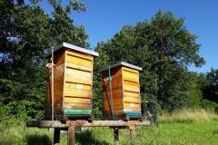02 Bienenstand